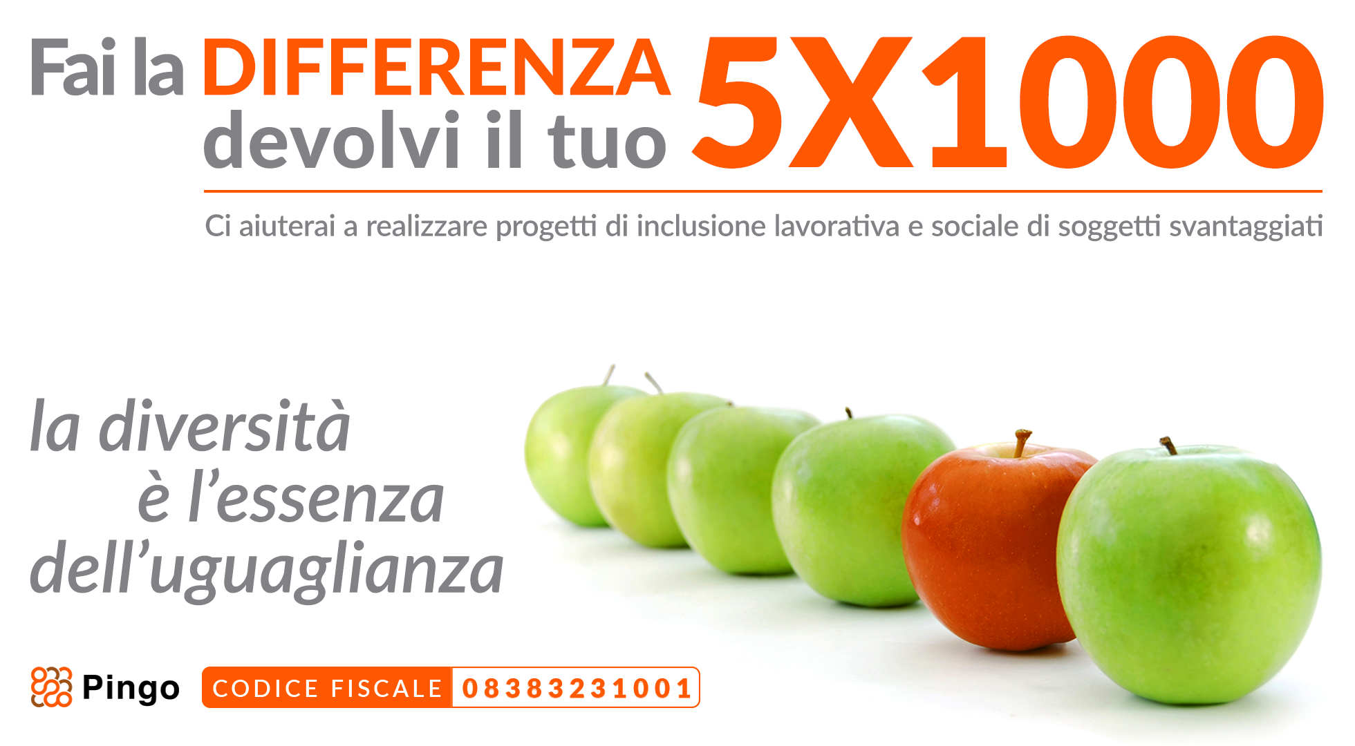 Devolvi il tuo 5x1000 a Pingo, fai la differenza!